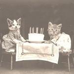 彼氏の誕生日で絶対喜ぶ5つのデートプラン