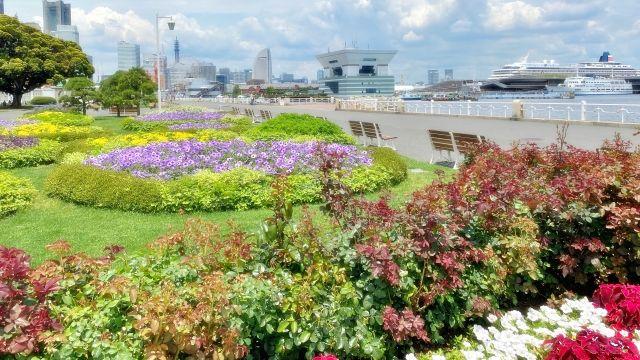 山下公園 海 花壇