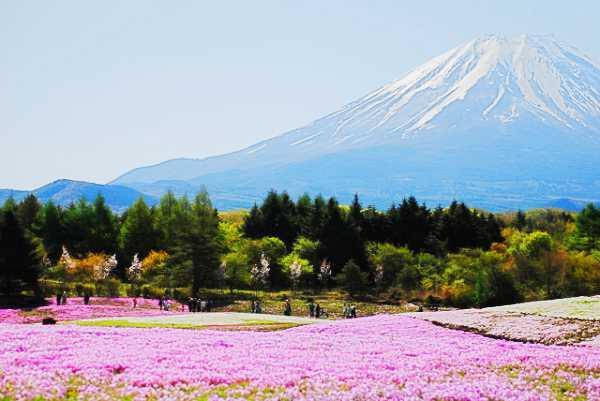 富士山の待ち受けで恋愛運アップ