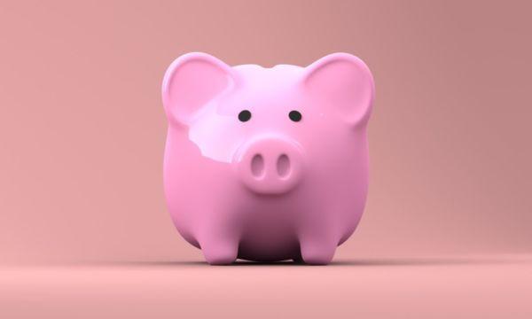 豚の貯金箱 お金