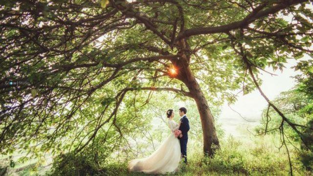 スピリチュアルな観点から考えた結婚の7の意味