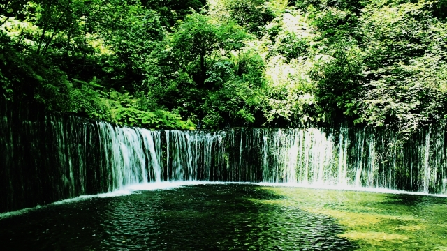 滝 森林 山 水 川 自然